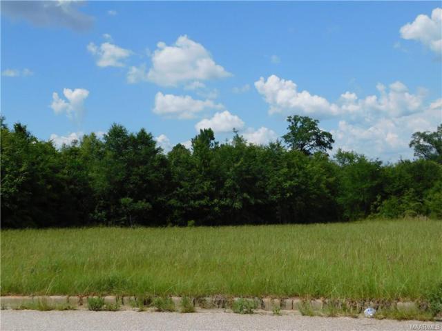 228 Clearview Drive, Enterprise, AL 36330 (MLS #436200) :: Buck Realty