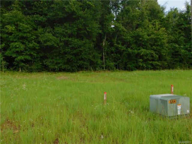 212 Clearview Drive, Enterprise, AL 36330 (MLS #436212) :: Buck Realty