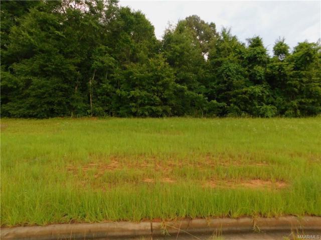 206 Clearview Drive, Enterprise, AL 36330 (MLS #436227) :: Team Linda Simmons Real Estate