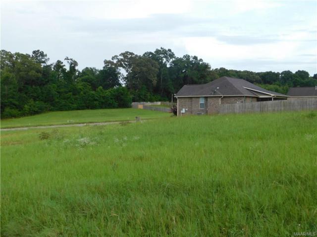 223 Clearview Drive, Enterprise, AL 36330 (MLS #436228) :: Team Linda Simmons Real Estate