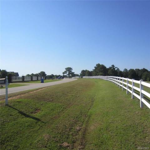 1626A County Road 537 Road, Enterprise, AL 36330 (MLS #436420) :: Team Linda Simmons Real Estate