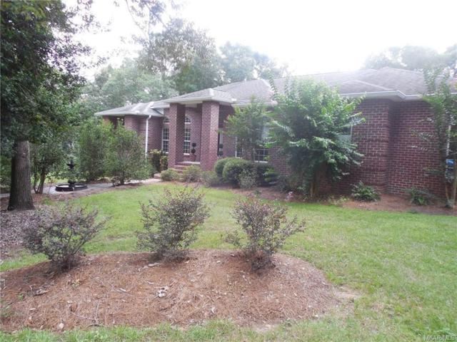 2364 County Road 33 Road, Ozark, AL 36360 (MLS #437181) :: Team Linda Simmons Real Estate