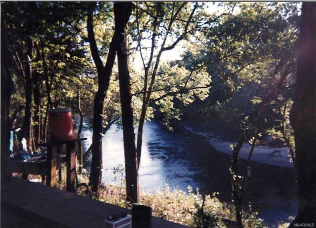 1078 Choctawhatchee River Road, Geneva, AL 36340 (MLS #438237) :: Team Linda Simmons Real Estate