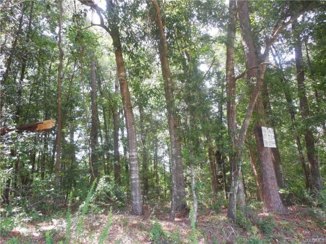 LOTS 12,13 &14 Tharpe Drive, Ozark, AL 36360 (MLS #438251) :: Team Linda Simmons Real Estate