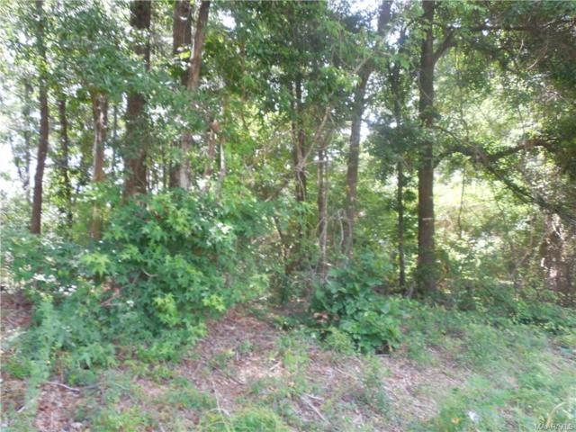 LOT 15 Tharpe Drive, Ozark, AL 36360 (MLS #438253) :: Team Linda Simmons Real Estate