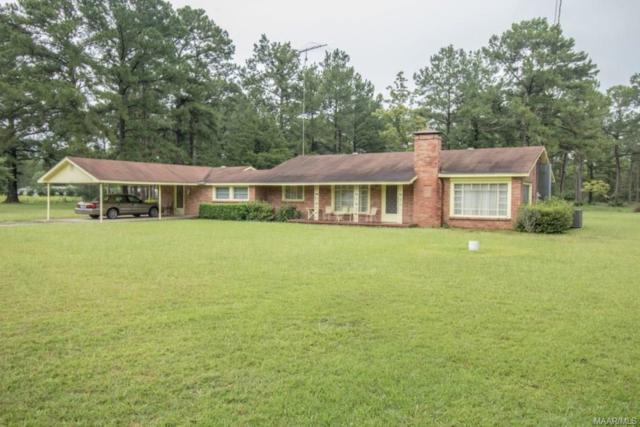332 E County Road 4 ., Geneva, AL 36340 (MLS #438715) :: Team Linda Simmons Real Estate