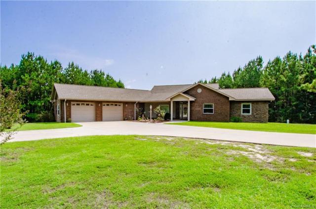 490 County Road 330 ., Elba, AL 36323 (MLS #439636) :: Team Linda Simmons Real Estate