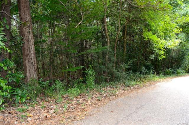 113 Deer Run Strut ., Enterprise, AL 36330 (MLS #439881) :: Team Linda Simmons Real Estate