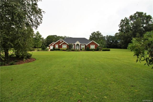 170 Easy Street Street, Dothan, AL 36303 (MLS #440006) :: Team Linda Simmons Real Estate