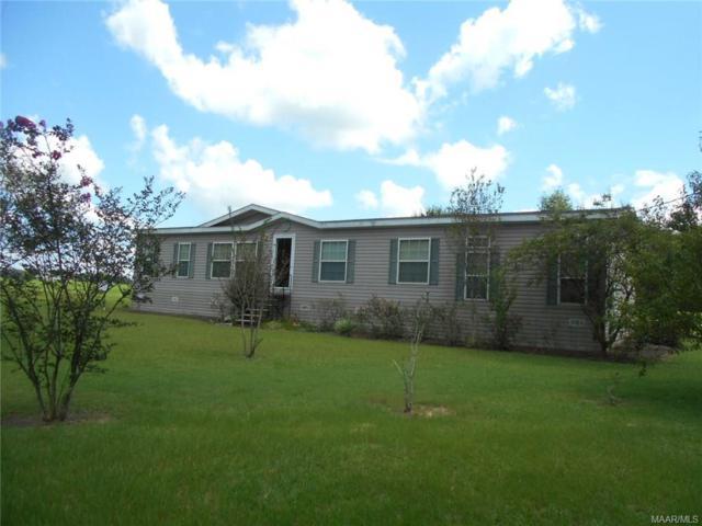 462 County Road 6 Road, Geneva, AL 36340 (MLS #440015) :: Team Linda Simmons Real Estate