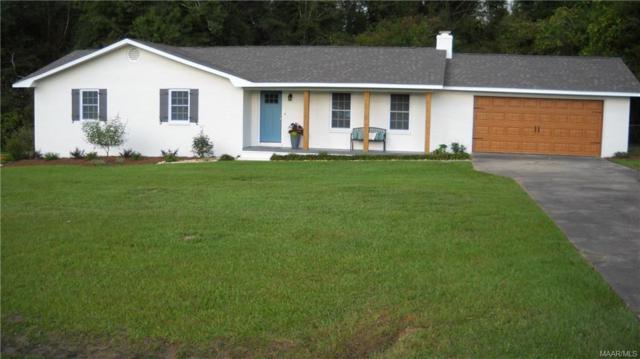 1317 Highland Drive, Elba, AL 36323 (MLS #440142) :: Team Linda Simmons Real Estate