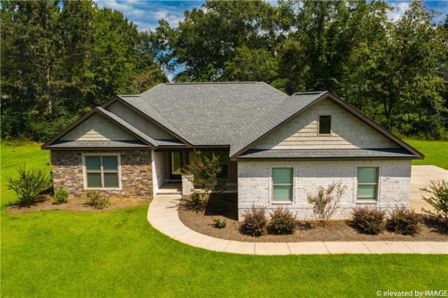 165 County Road 690 ., Chancellor, AL 36316 (MLS #440488) :: Team Linda Simmons Real Estate
