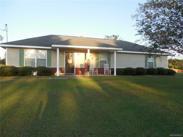 182 Amber Drive, Ozark, AL 36360 (MLS #441807) :: Team Linda Simmons Real Estate