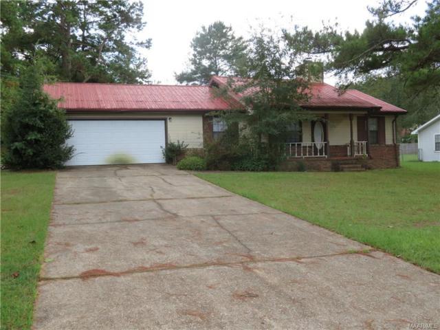 91 Blackhawk Drive, Daleville, AL 36322 (MLS #442004) :: Team Linda Simmons Real Estate