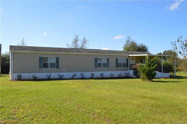 7554 County Road 636 ., Chancellor, AL 36316 (MLS #442306) :: Team Linda Simmons Real Estate