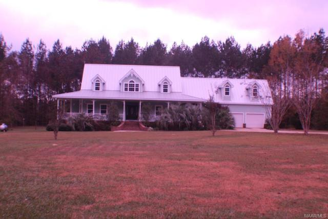 51 County Road 332 Road, Skipperville, AL 36374 (MLS #444345) :: Team Linda Simmons Real Estate