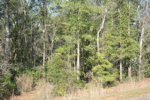 0 Private Road 1702 ., Enterprise, AL 36330 (MLS #444542) :: Team Linda Simmons Real Estate