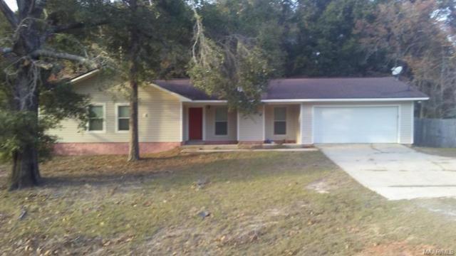 810 Joe Bruer Road, Daleville, AL 36322 (MLS #445088) :: Team Linda Simmons Real Estate