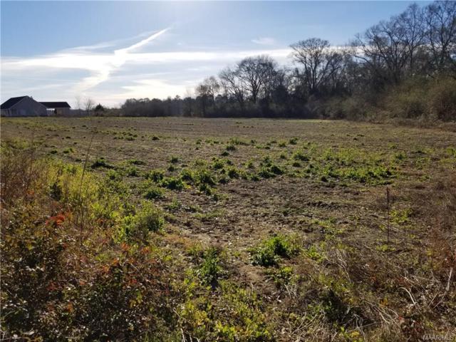 0 Reeves Street, Malvern, AL 36349 (MLS #445318) :: Team Linda Simmons Real Estate