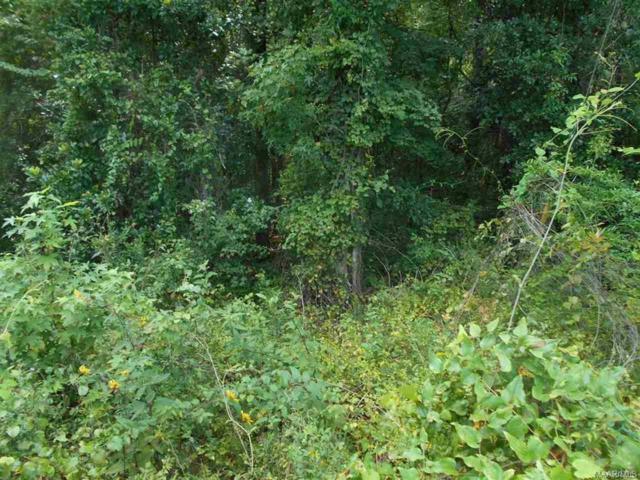 TBD Stuart Tarter Road, Ozark, AL 36360 (MLS #445725) :: Team Linda Simmons Real Estate