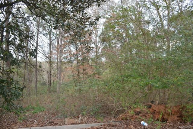 TBD Montevallo Court, Enterprise, AL 36330 (MLS #445797) :: Team Linda Simmons Real Estate