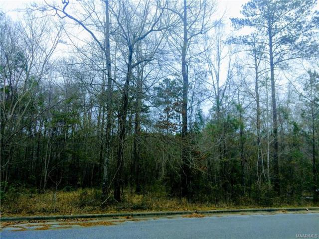 0 Woodland Heights Drive, Greenville, AL 36037 (MLS #446007) :: LocAL Realty