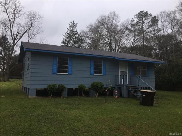 47 Dale Circle, Midland City, AL 36350 (MLS #447401) :: Team Linda Simmons Real Estate
