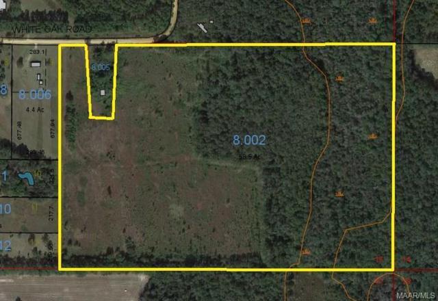 58.5 ACRES Whiteoak Road, Slocomb, AL 36375 (MLS #447590) :: Team Linda Simmons Real Estate