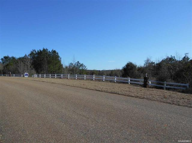 Lot 36 County Road 558 Drive, Enterprise, AL 36330 (MLS #447609) :: Team Linda Simmons Real Estate