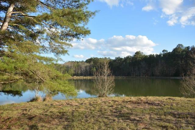 TBD Private Road 1106 ., Enterprise, AL 36330 (MLS #447636) :: Team Linda Simmons Real Estate