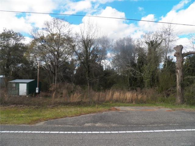 1761 Highway 166 Highway, Elba, AL 36323 (MLS #448385) :: Team Linda Simmons Real Estate