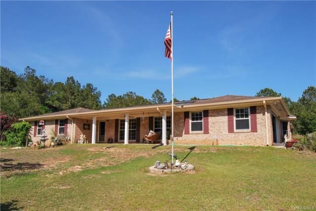 217 Wynnwood Circle, Midland City, AL 36350 (MLS #449465) :: Team Linda Simmons Real Estate
