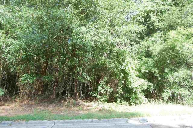 117 Stoneridge Road, Enterprise, AL 36330 (MLS #449592) :: Team Linda Simmons Real Estate
