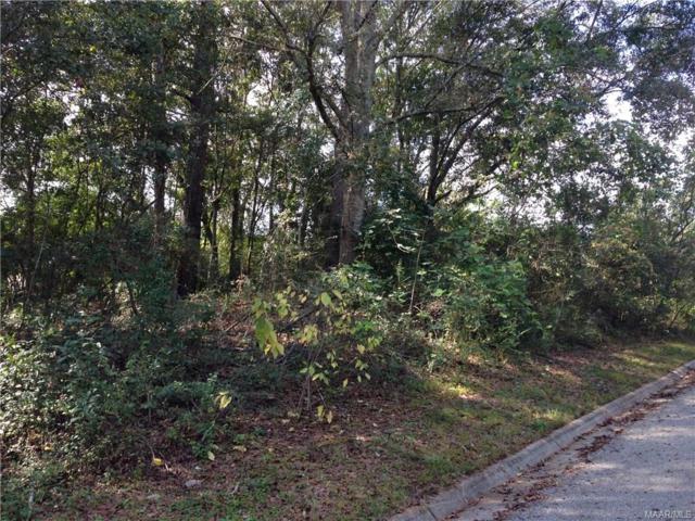 112 Stoneridge Road, Enterprise, AL 36330 (MLS #449610) :: Team Linda Simmons Real Estate
