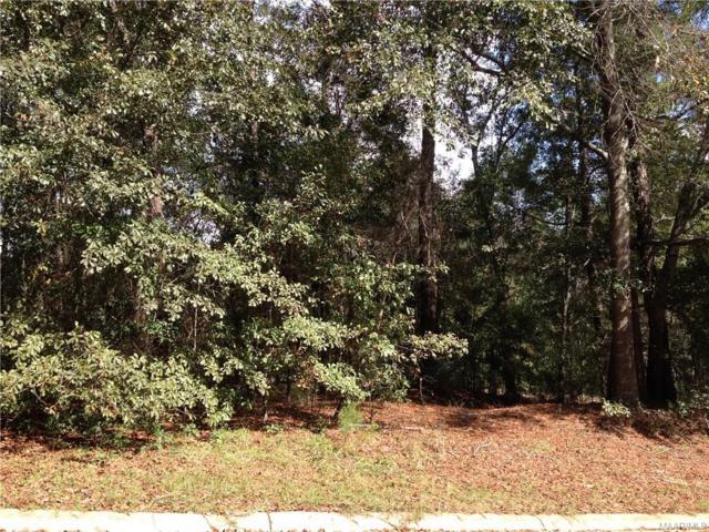 115 Stoneridge Road, Enterprise, AL 36330 (MLS #449612) :: Team Linda Simmons Real Estate