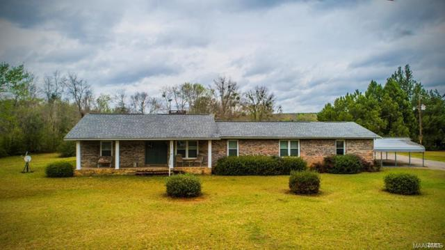 6463 Co Rd 636 ., New Brockton, AL 36316 (MLS #449679) :: Team Linda Simmons Real Estate