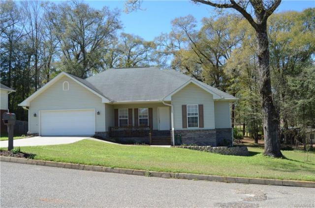 227 Cedar Grove Lane, Enterprise, AL 36330 (MLS #449725) :: Team Linda Simmons Real Estate
