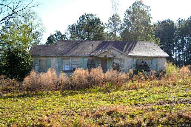 1488 County Road 147 Road, New Brockton, AL 36351 (MLS #449951) :: Team Linda Simmons Real Estate