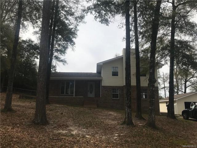 237 Skyline Drive, Daleville, AL 36322 (MLS #450094) :: Team Linda Simmons Real Estate