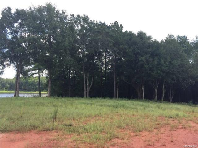 461 County Road 561 ., Enterprise, AL 36330 (MLS #450382) :: Team Linda Simmons Real Estate
