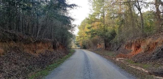 15.6 +/- Acres County Road 307 ., Skipperville, AL 36374 (MLS #450687) :: Team Linda Simmons Real Estate