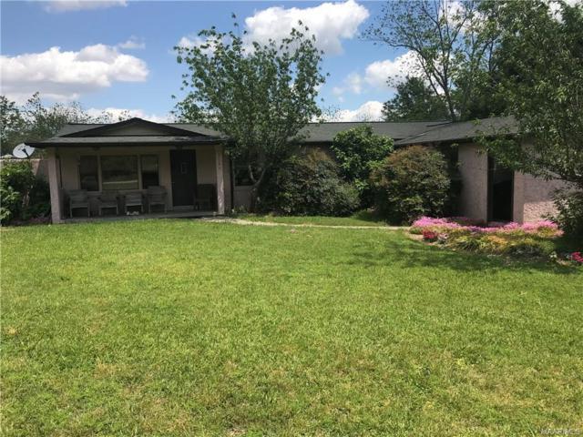 3564 Alford Road, Samson, AL 36477 (MLS #451455) :: Team Linda Simmons Real Estate
