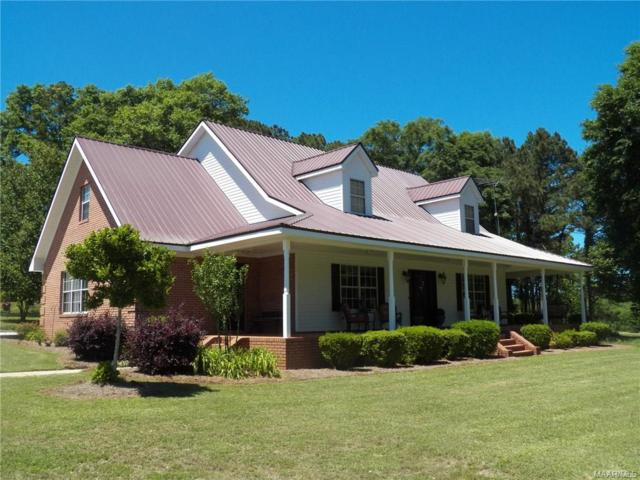 873 County Road 514 Road, Elba, AL 36323 (MLS #451577) :: Team Linda Simmons Real Estate
