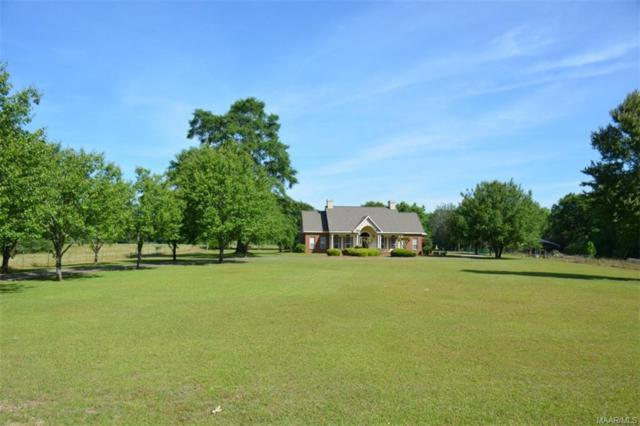 8993 Highway 87 ., Elba, AL 36323 (MLS #451611) :: Team Linda Simmons Real Estate