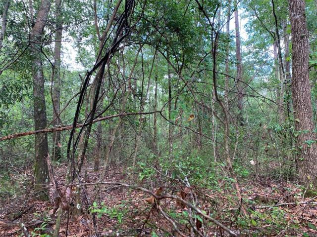 2.32 Acres Mcdougald Street ., Geneva, AL 36340 (MLS #452267) :: Team Linda Simmons Real Estate