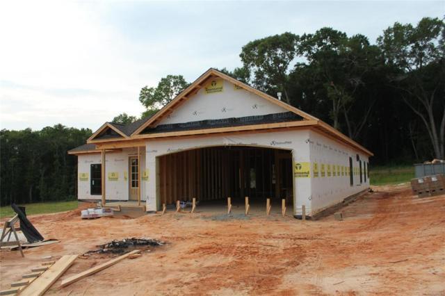 122 Birchwood Place, Enterprise, AL 36330 (MLS #452359) :: Team Linda Simmons Real Estate