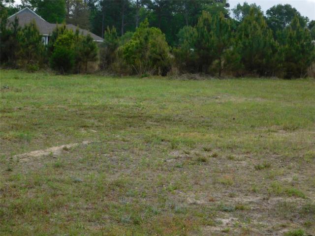 00 Lot 1, Blk C, Sandy Hills S/D ., Ozark, AL 36360 (MLS #452636) :: Team Linda Simmons Real Estate