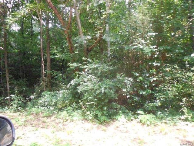TBD N Willa Street, Ozark, AL 36360 (MLS #454487) :: Team Linda Simmons Real Estate