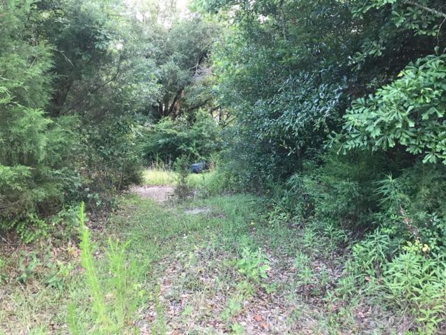 1461 Caroline Street, Elba, AL 36323 (MLS #454525) :: Team Linda Simmons Real Estate