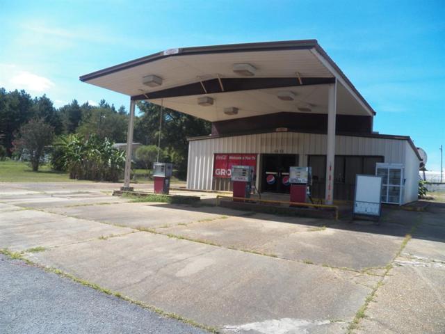 4665 County Road 636 ., Elba, AL 36323 (MLS #454741) :: Team Linda Simmons Real Estate